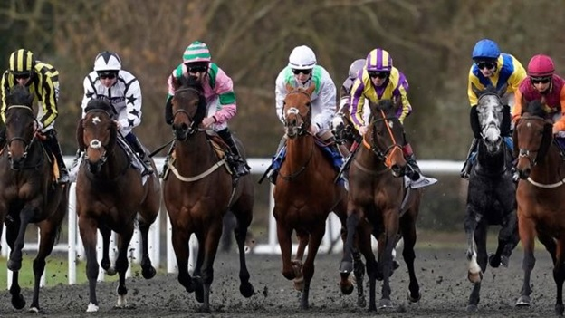horse racing strategy