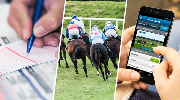 Why Horse Betting