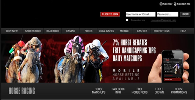 Type of Horse Betting