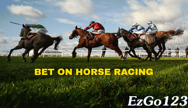 Horse Racing Betting - Exotics Bet Types