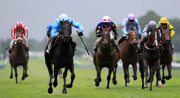 Why Is Horse Racing Considered an Elitist Sport?