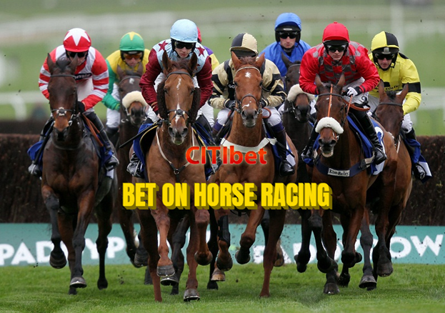 Top 5 Rules for Horse Racing Betting